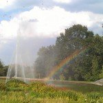 Killesberg Höhenpark - Regenbogen am Wasserbecken