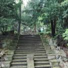 Villa Moser - ehemalige Treppe