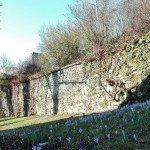 Burgruine Nippenburg - Außenmauer