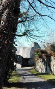 Teilansicht der Burgruine Nippenburg