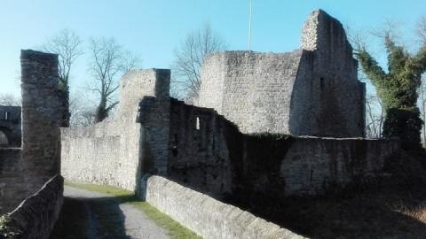 Die Burgruine Nippenburg bei Schwieberdingen