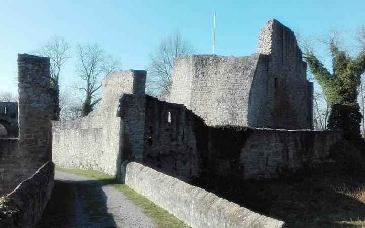 Die Burgruine Nippenburg Haupteingang