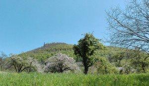 Die Burg Teck bei Kichrheim an der Teck Weitblick von Owen aus