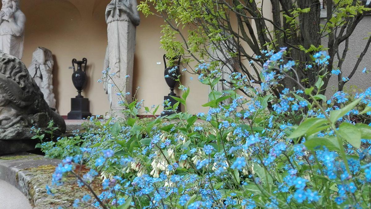 Lapidarium Stuttgart - Wandelgang hinter Blumenmeer
