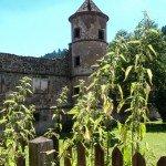 Kloster Hirsau Calw - Turm im Hintergrund