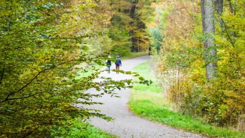 Der Esslinger Spitalwald: Grünoase mit Erholungswert