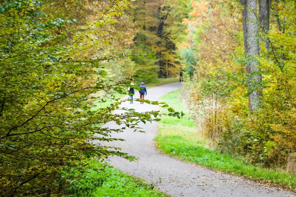 Esslinger-Spitalwald-bei-Stuttgart-der-Katzenbacher-Hof-mit-Biergarten-gut-ausgeschilderte-Spazierwege