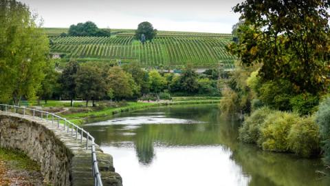 Ausflugsziele Mittlerer Neckar: von Plochingen bis Heilbronn