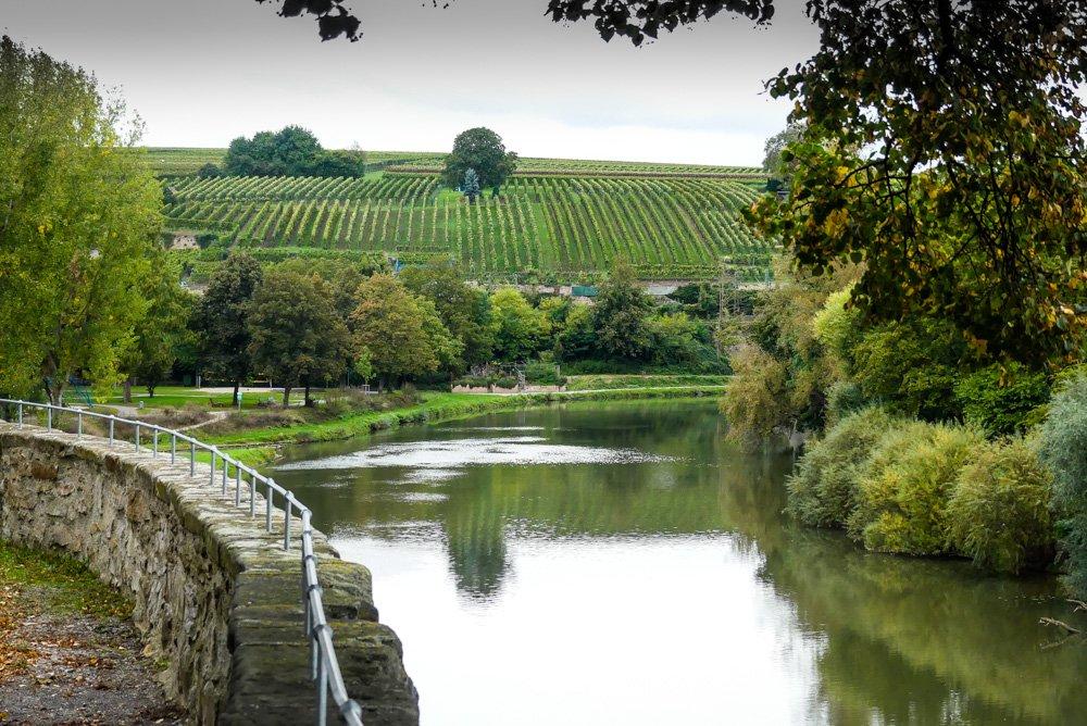 Ausflugsziele Mittlerer Neckar - Flusslandschaft bei Lauffen