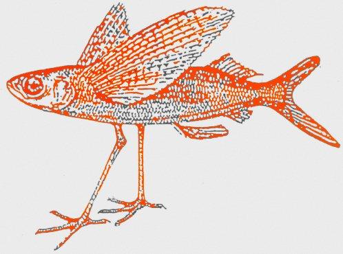 Zum Fischmeister In Ambach Am Starnberger See