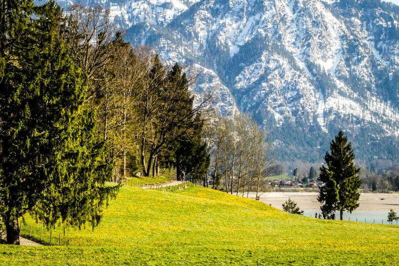 Allgäu rund um Füssen - Blick über den Forggensee-1