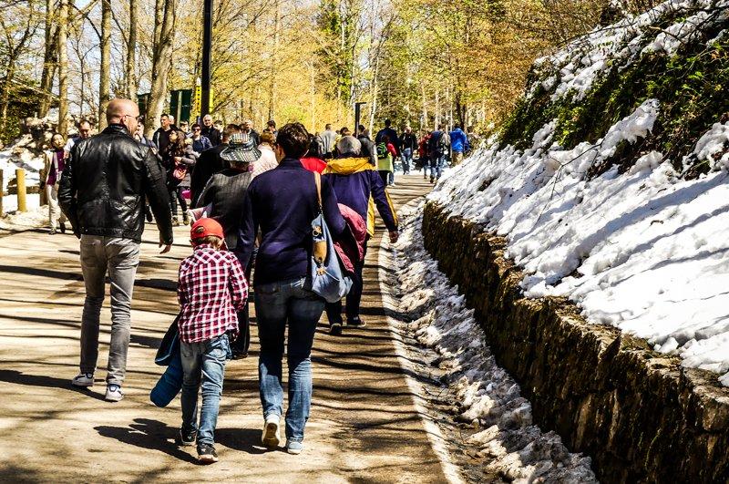 Allgäu rund um Füssen - auf dem Weg zum Schloss Neuschwanstein