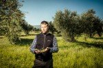Taste of Koroni - Marc Friedrich Mayer im Olivenhain-1