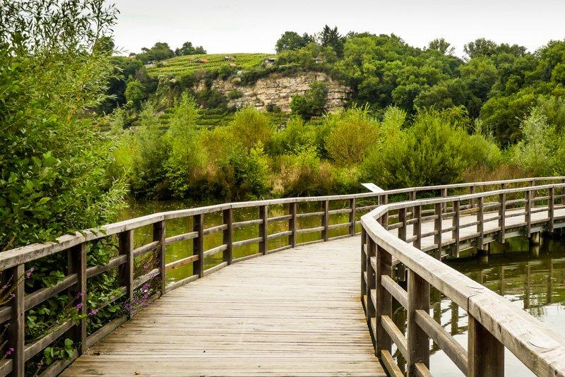 Wanderwege - von Remseck am Neckar bis Ludwigsburg - auf dem Holzweg im Neckarbiotop Zugwiesen