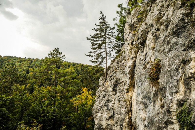 Blautopf in Blaubeuren - schroffes Felsenkunstwerk