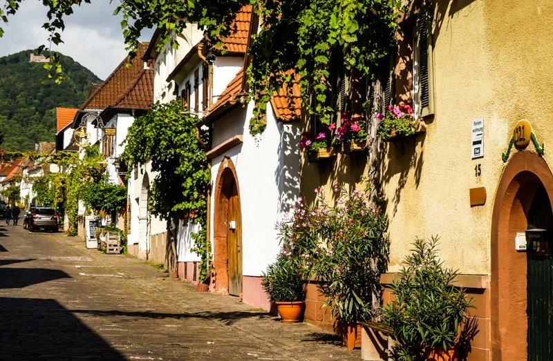 Hotels In Rhodt Unter Rietburg Deutschland