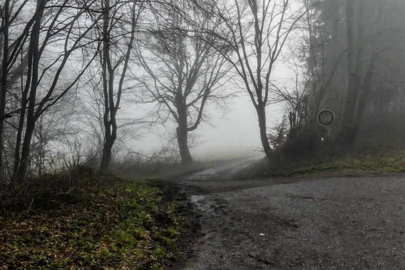 Der-Vulkan-Katzenbuckel-im-Neckar-Oldenwaldkreis-Hochnebel-im-Wald-1-1