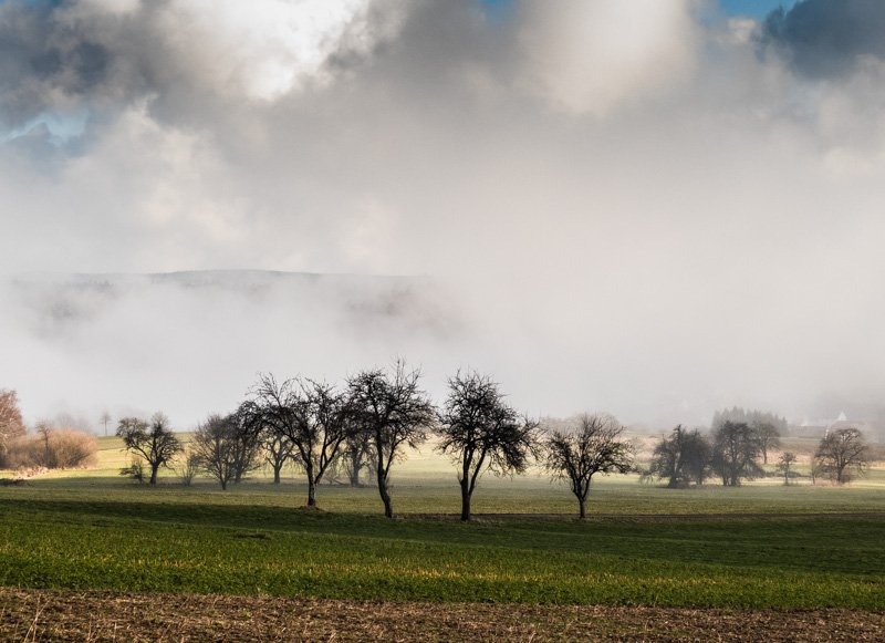 er Vulkan Katzenbuckel im Neckar-Oldenwaldkreis - Landschaft von Nebel umhüllt