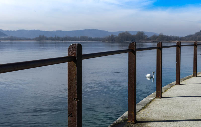 Bodman-Ludwigshafen am Bodensee - Blick Richtung Naturschutzgebiet Ried