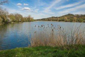 Kleiner Liebling im Kraichgau: der Aalkistensee bei Maulbronn