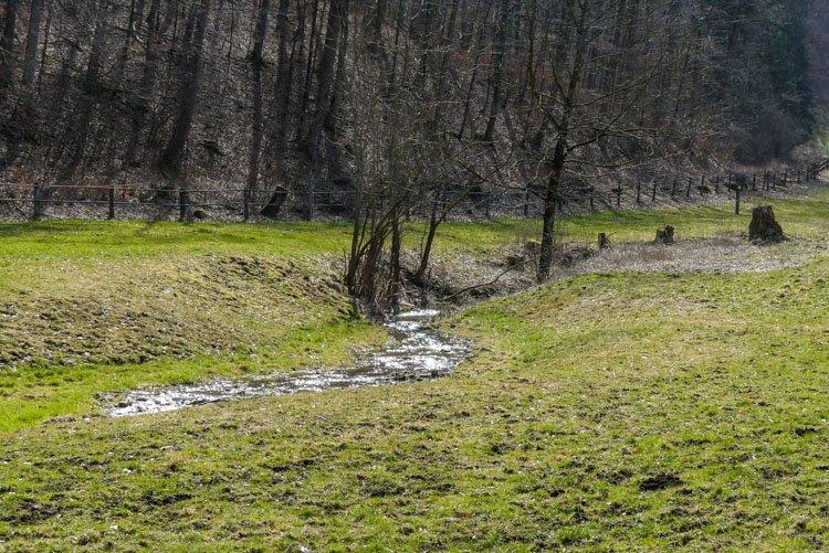 Gütersteiner Wasserfälle - Wiesenbach auf dem Weg zum Vorwerk Güterstein