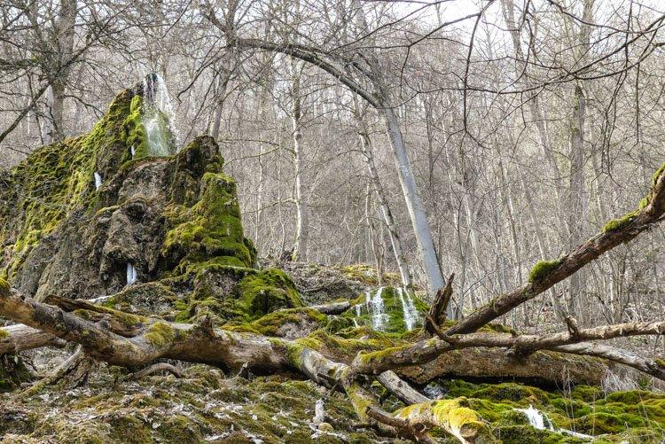 Gütersteiner Wasserfälle - die Kalktuffen in Blick
