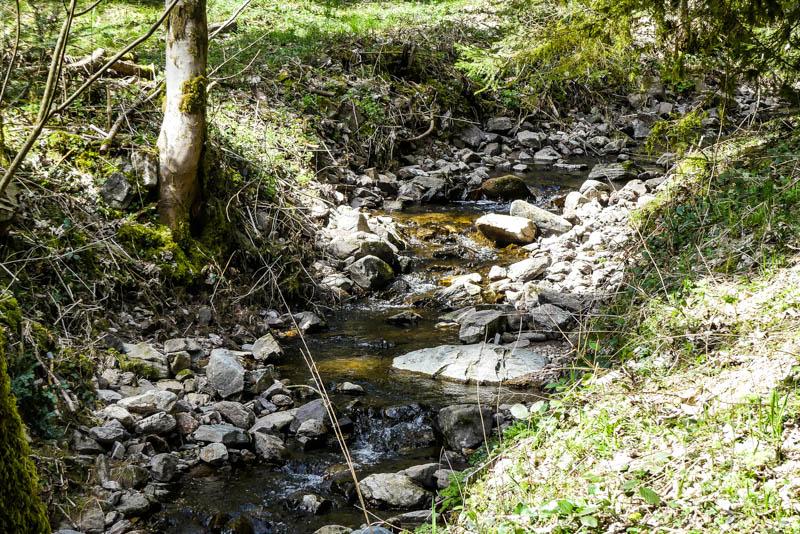 Wandertour Schiltach - Schenkenzell - leise fließt der Kuhbach
