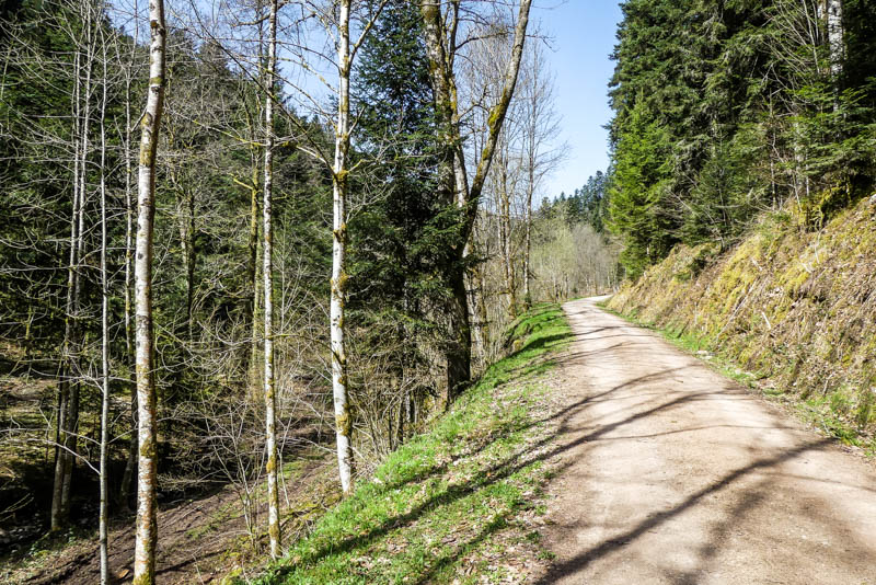 Wandertour Schiltach - Schenkenzell - nicht steil aber stetig bergauf