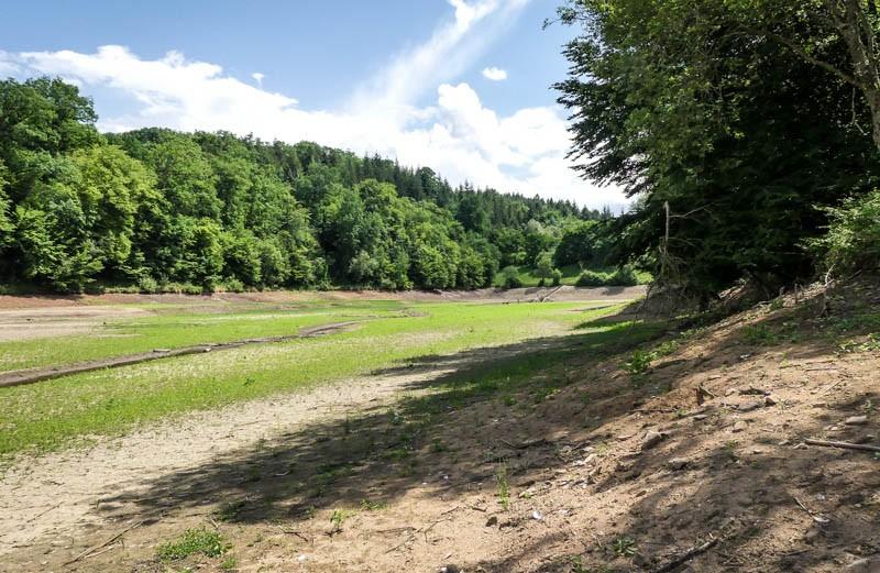 Der-Sulzbach-Stausee-bei-Waldenbuch-während-Sanierungsmaßnahmen-blühende-Seelandschaft