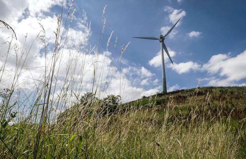 Grüner-Heiner-mit-Windrad-bei-Stuttgart-Weilimdorf-grüne-Energie