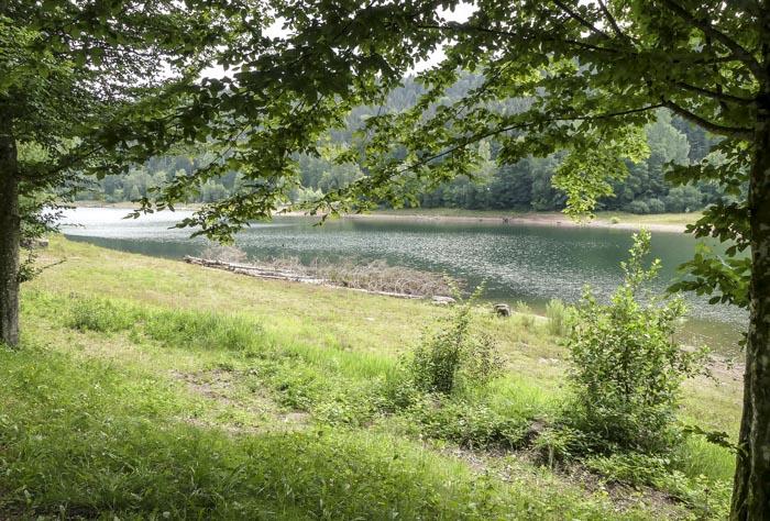 Die-Nagoldtalsperre-Seewald-Bademöglichkeiten-am-gegenüberliegenden-Ufer-1-von-1