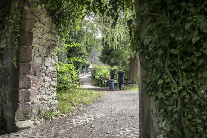 Ausflugsziele rund um Nagold - Burgruine Hohennagold - Blick durch das Tor auf das Burggelände