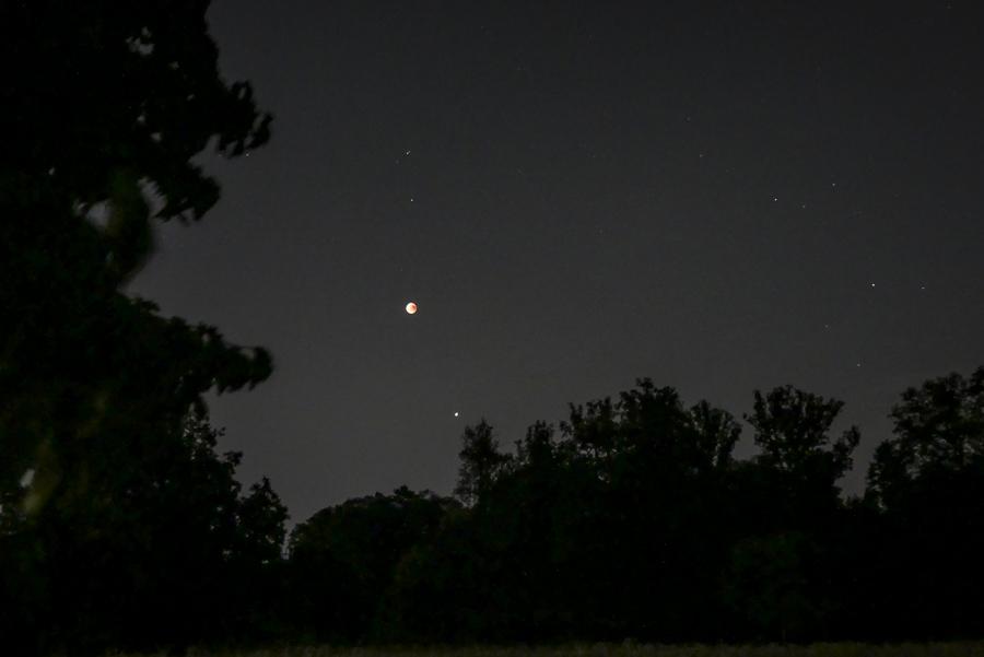 Mondfinsternis Gerlingen - Juli 2018 - Schloss Solitude - hinter dem Schloss über Baumkronen