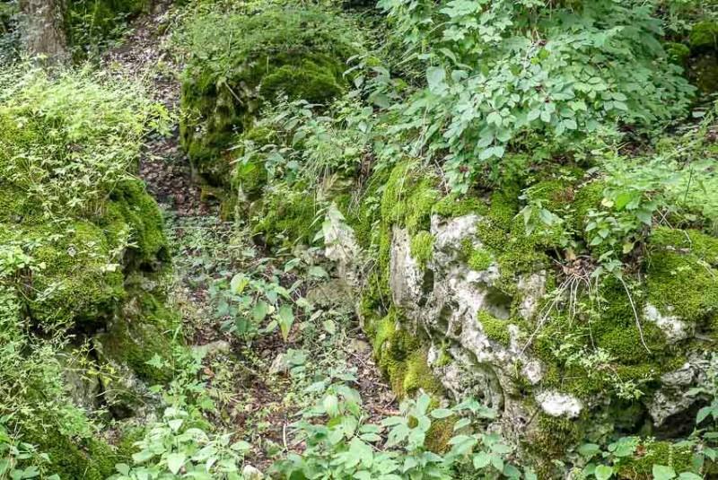 Burgruine-Herwartstein-Königsbronn-man-muss-schon-genauer-schauen-1