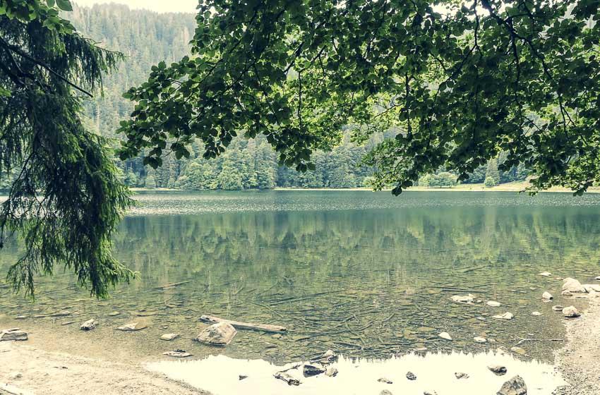 Feldsee am Feldberg - schöner Blick auf den See - 3-Seen-Tour im Hochschwarzwald