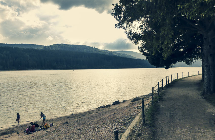 Hochschwarzwald - 3-Seen-Tour - der Schluchsee als Badesee