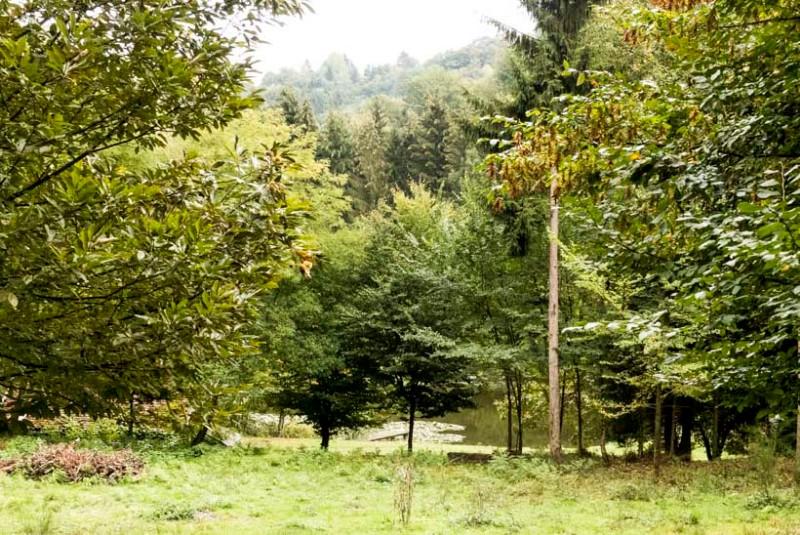 Burg-Lützelstein-La-Petite-Pierre-Département-Bas-Rhin-Kleine-Wanderung-rund-um-die-Burg