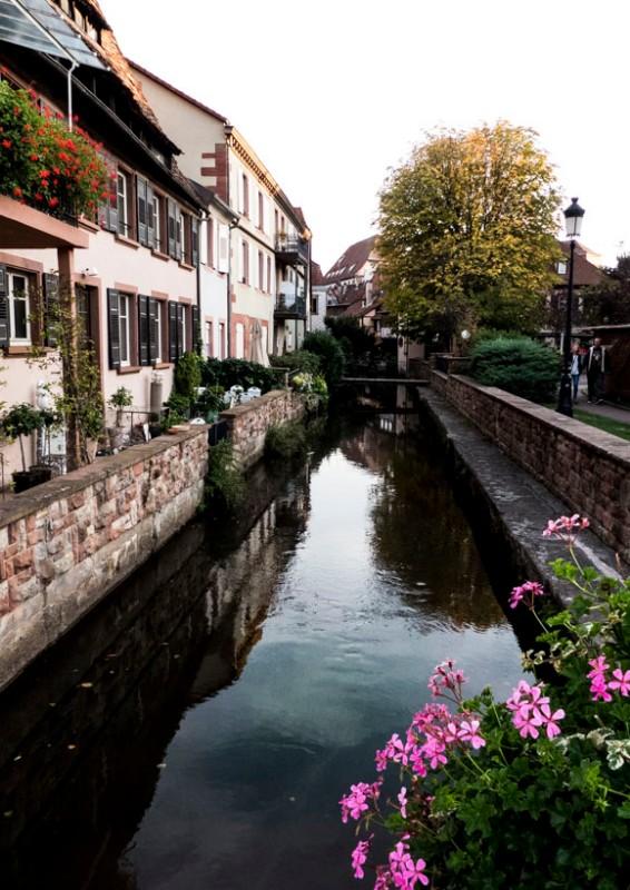 Wissembourg-die-Lauter-fließt-durch-den-Ort