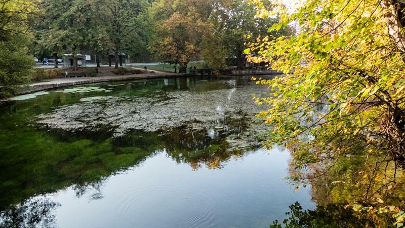 Die-Aachquelle-in-Aach-Herbststimmung-am-Wasser