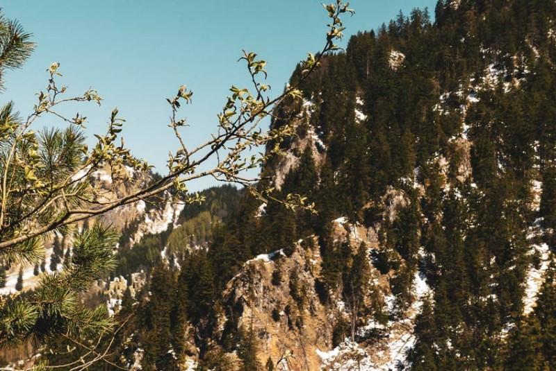 Die-Marienbrücke-bei-Füssen-hinter-dem-Schloss-Neu-Schwanstein-frühlingshafte-Schneereste