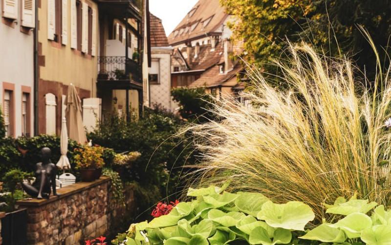 Das-Salzhaus-in-Wissembourg-Idylle-mit-Teilblick-auf-die-Terrasse