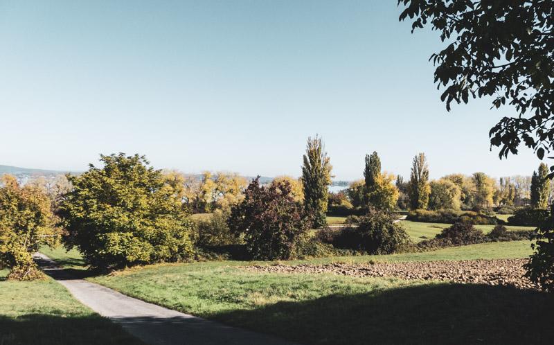 Gaienhofen Horn und die Hornspitze am Höri - schönes Landschaftsbild