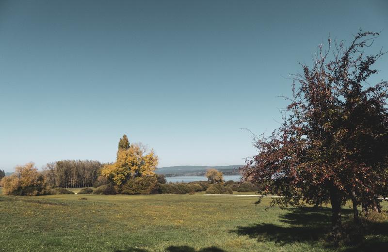 Gaienhofen Horn und die Hornspitze auf der Höri - herrliche Landschaft in Ufernähe