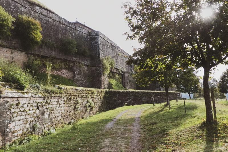 Zitadelle in Bitsch - Blick entlang der Mauer mit Bewuchs