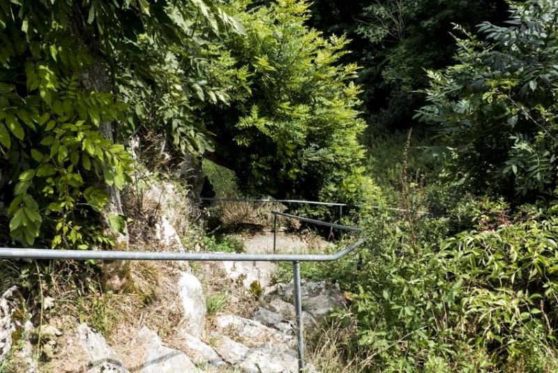 Ruine-Falkenstein-Eselsburger-Tal-der-Aufstieg-vom-Tal-aus