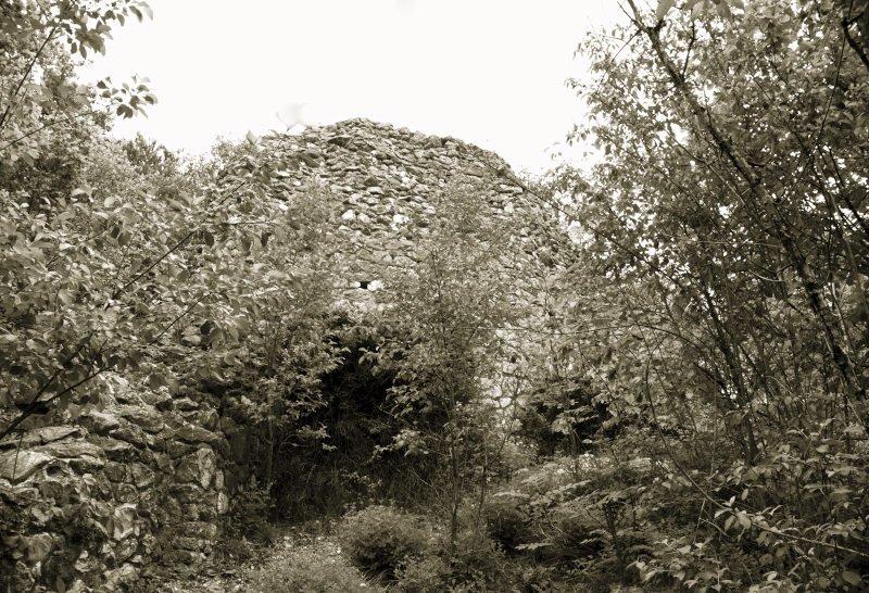 Wanderung rund um die Wimsener Höhle - Glastal- die Burgruine Alt-Ehrenfels