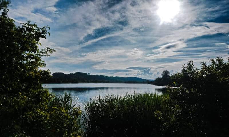 Zielfinger Seen - ein Blick über das Landschaftsschutzgebiet Vogelsee