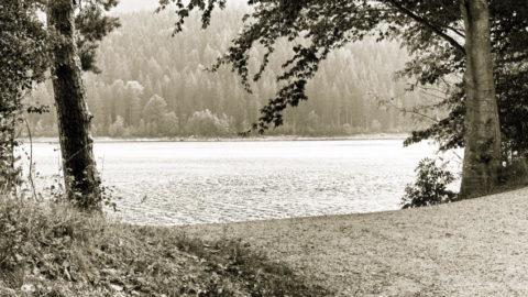 Badeseen rund um Stuttgart: Hier kannst Du so richtig abtauchen
