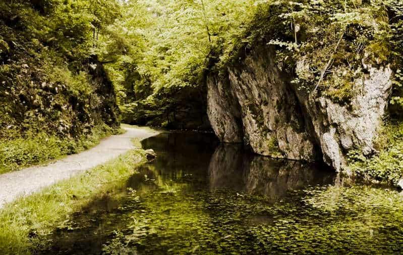Premiumwanderweg Hochgehschätzt - das Glastal - der Hasenbach