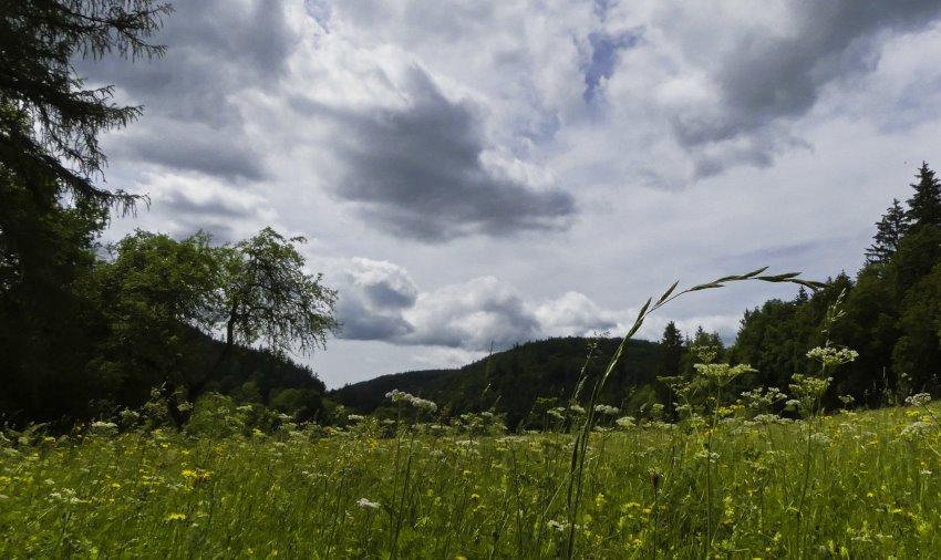 Ab durch das Glastal bei Hayingen: Premiumwanderweg Hochgehschätzt 3